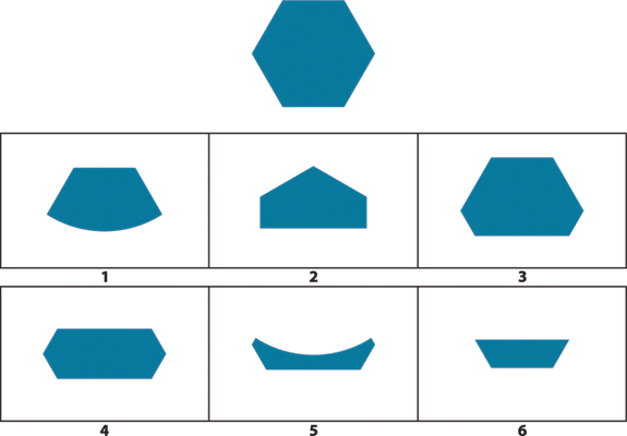 Puzles visuales WISC V