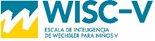 wiscV_logo